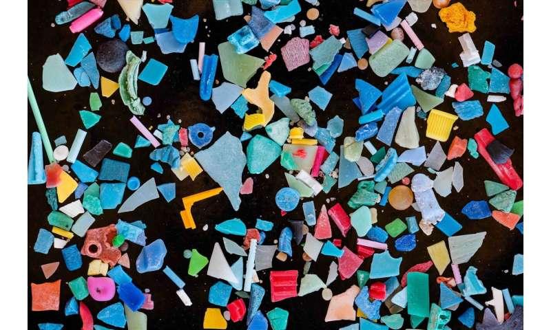 Microplastics in freshwaters