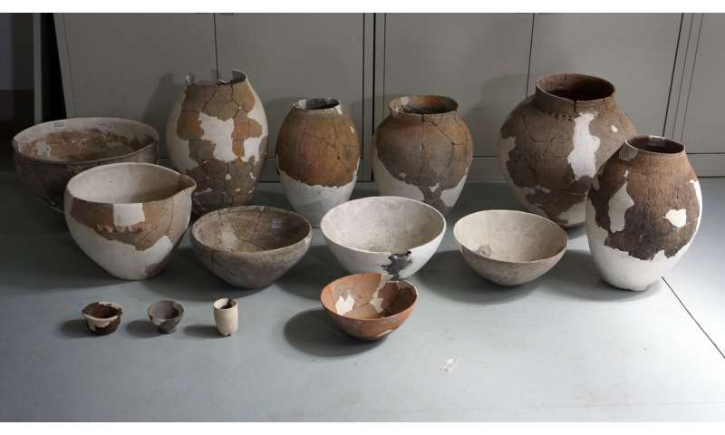 Neolithic pottery sherds from China reveal alcoholic beverage production techniques