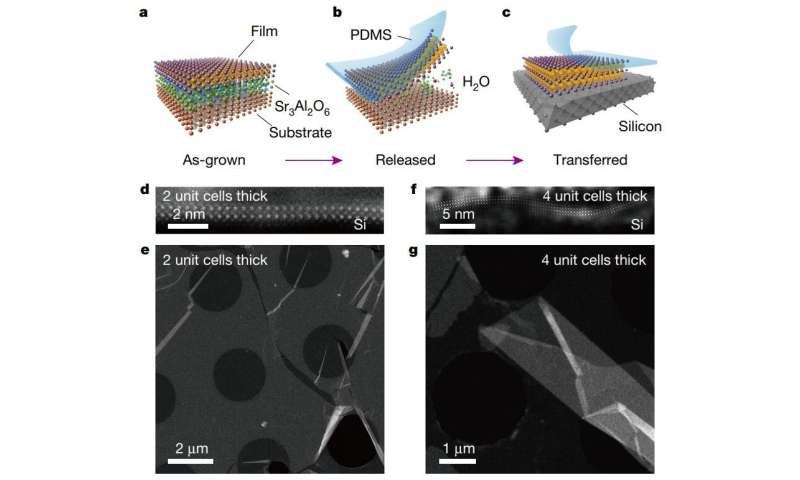 Researchers find a way to produce free-standing films of perovskite oxides