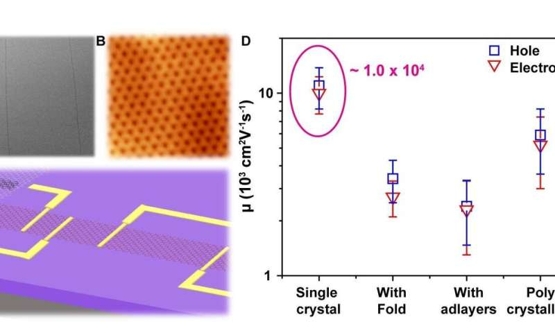 Graphenes now go monolayer and single crystalline