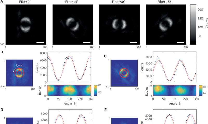 Scientists unveil image of quantum entanglement