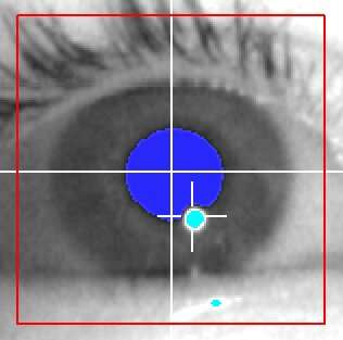 DeepEyedentification: identifying people based on micro eye movements