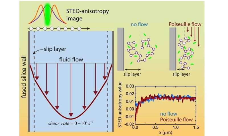 Slip layer dynamics reveal why some fluids flow faster than expected