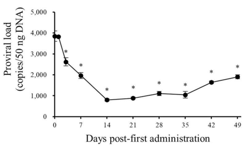 The drug combination effective against bovine leukemia
