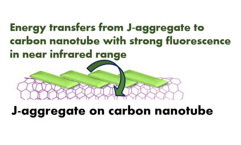 J-aggregate self-assembly on carbon nanotubes for new nanoscale devices
