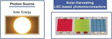 Energy-efficient solar photochemistry with luminescent solar concentrators