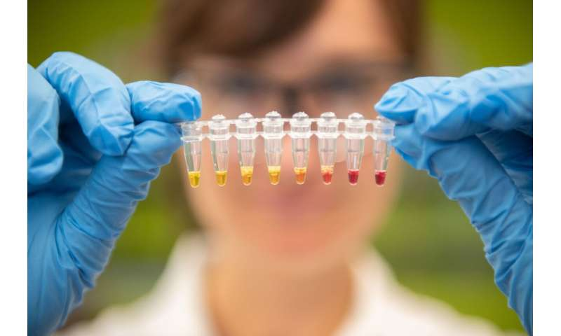 Test for life-threatening nutrient deficit is made from bacteria entrails