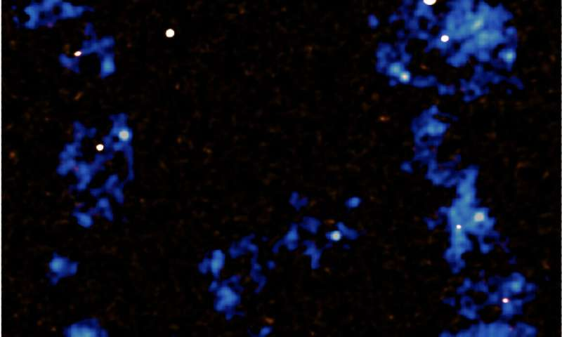Massive filaments fuel the growth of galaxies and supermassive black holes
