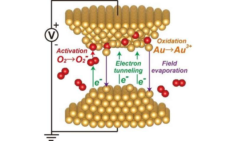 A close up on the real world — atomic migration under ambient conditions