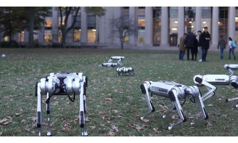 Fall madness: MIT's Mini Cheetah robots play soccer