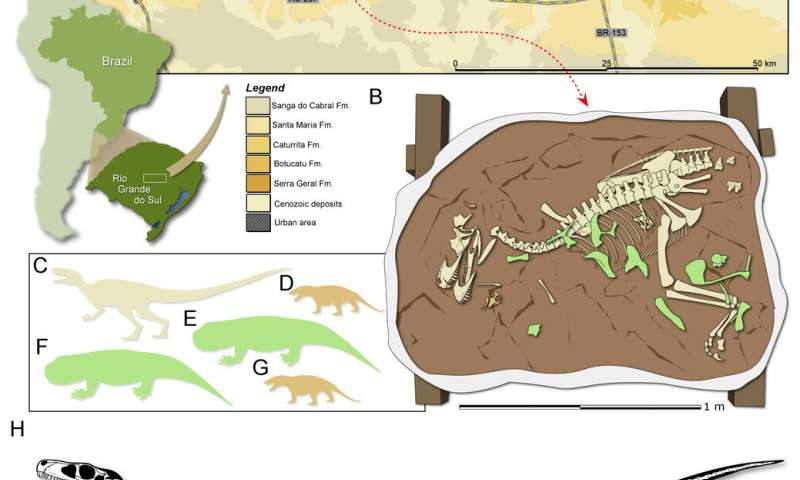 Oldest carnivorous dinosaur fossil unearthed in Brazil