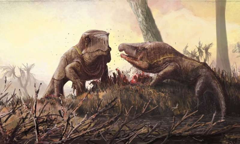 New study of Vjushkovia triplicostata shows they had heads that were larger proportionally than dinosaurs