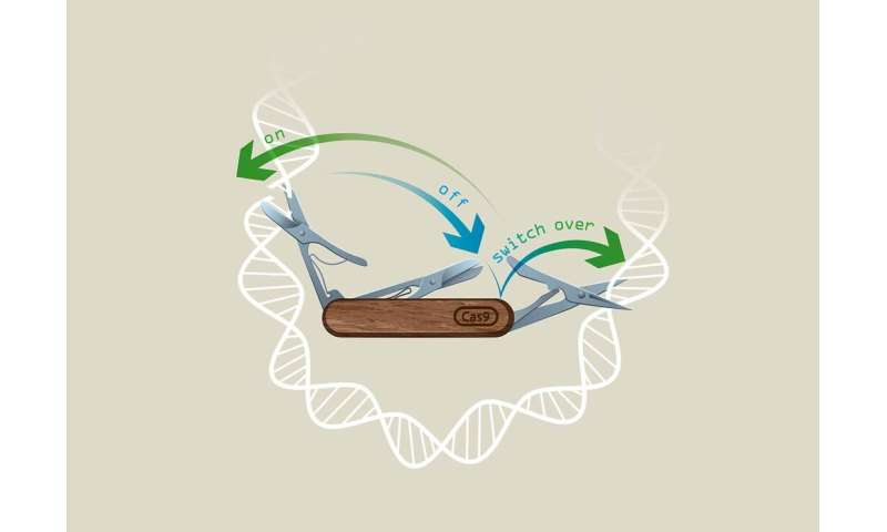 Harnessing the power of CRISPR in space and time