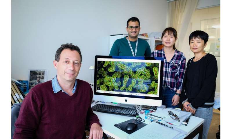 Scientists uncover structure of key pneumonia virus enzyme, suggesting a route for new antiviral treatments