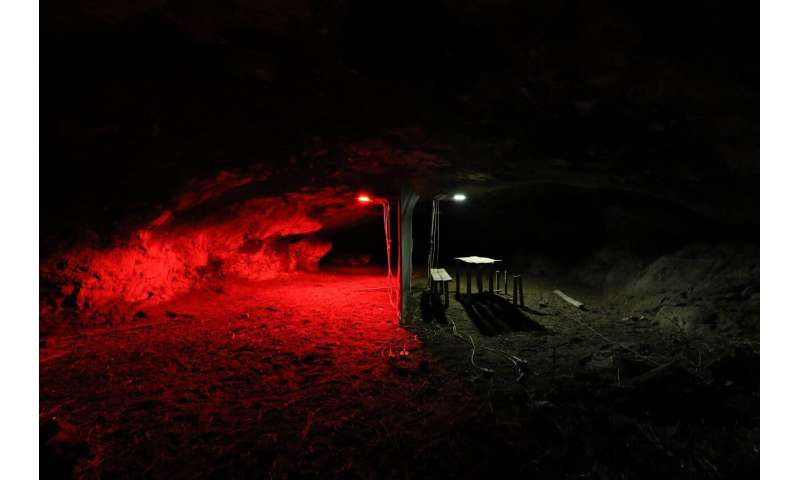 Illumination drives bats out of caves, no matter the color of the light