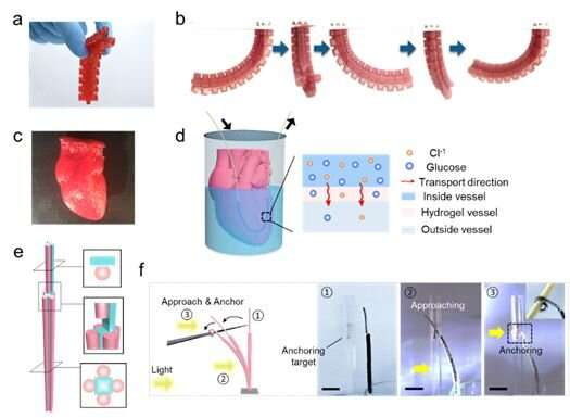 [Dialog] Hydrogel printing made easy and biocompatible for soft robotic systems