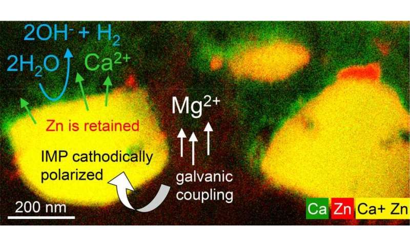 Monitoring the corrosion of bioresorbable magnesium