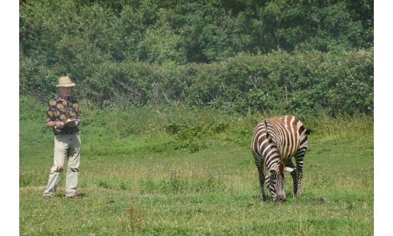 Research reveals why the zebra got its stripes