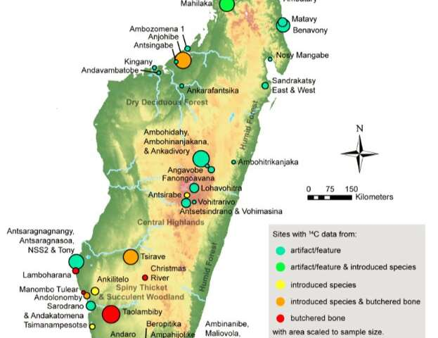 Researchers confirm timeline of human presence on Madagascar