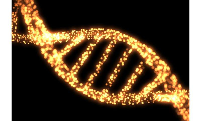Scientists develop method to standardize genetic data analysis