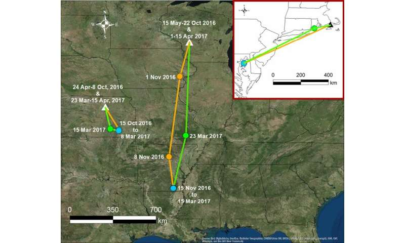 Biologists Discover Migratory Patterns of Two North American Grassland Bird Species