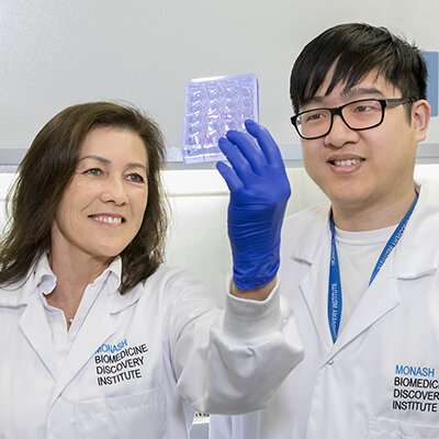 Discovery may help kick-start ageing immune system