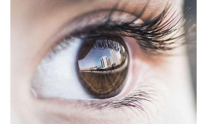 [Image: 7-eye.jpg]