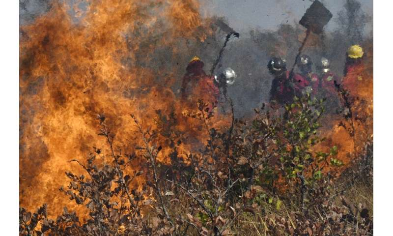 Firefighters try to control a blaze near Charagua in Bolivia on August 29, 2019
