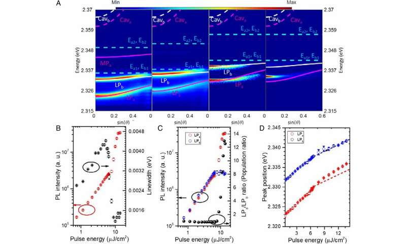Observations of Rydberg exciton polaritons and their condensate in a perovskite cavity