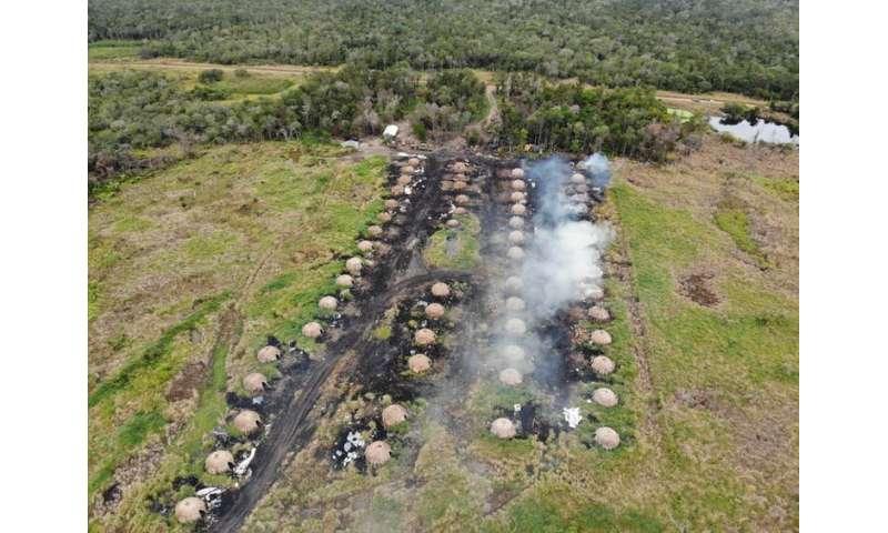 El segundo bosque más grande de Sudamérica también está ardiendo, y el carbón 'ecológico' está subsidiando su destrucción.