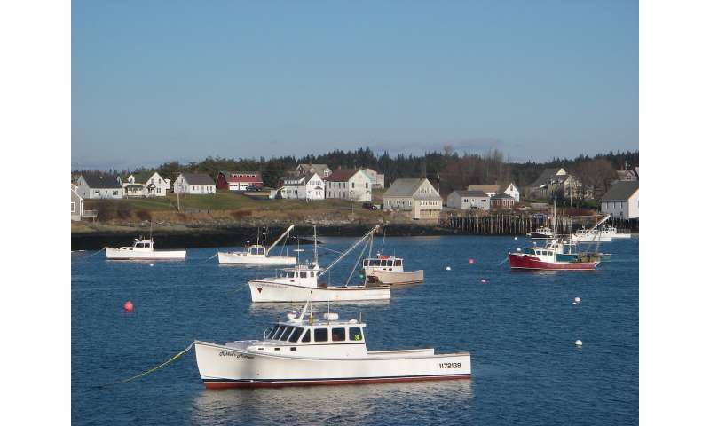 Climate change threatens commercial fishers from Maine to North Carolina