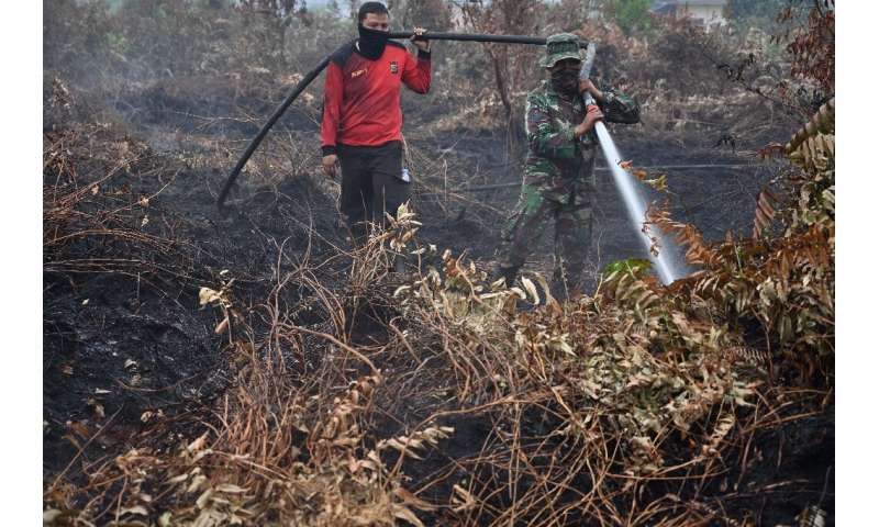 Firefighters are battling round-the-clock through charred forests