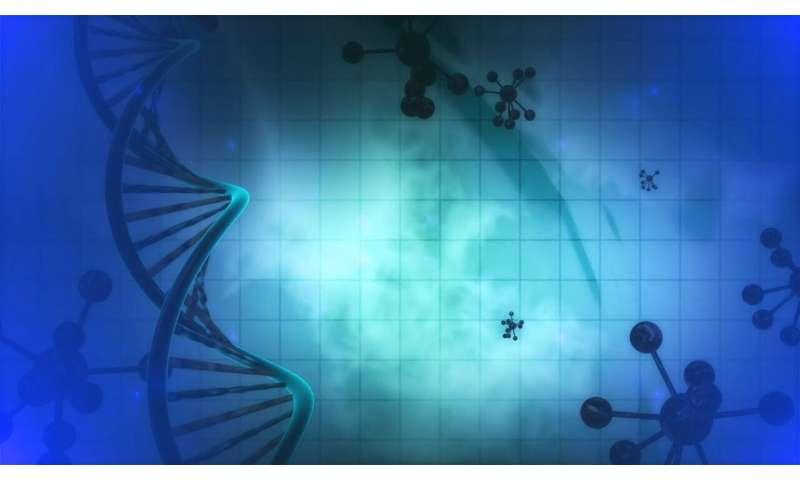 gène  L'approche multi-omique offre de nouvelles perspectives sur la gravité des allergies aux arachides 8 gene