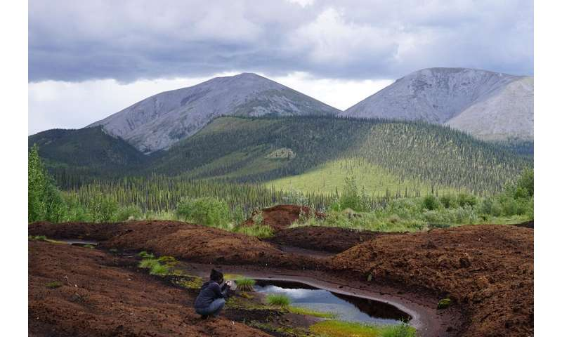 Research reveals evidence of climate change in the Yukon permafrost