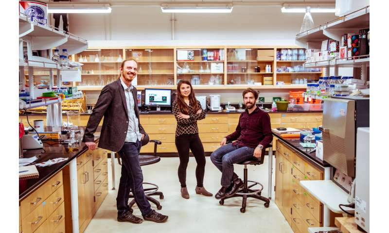 Scientists use molecular tethers and chemical 'light sabers' to construct platforms for tissue engineering