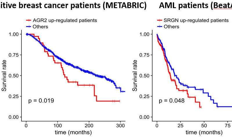 A step closer to cancer precision medicine