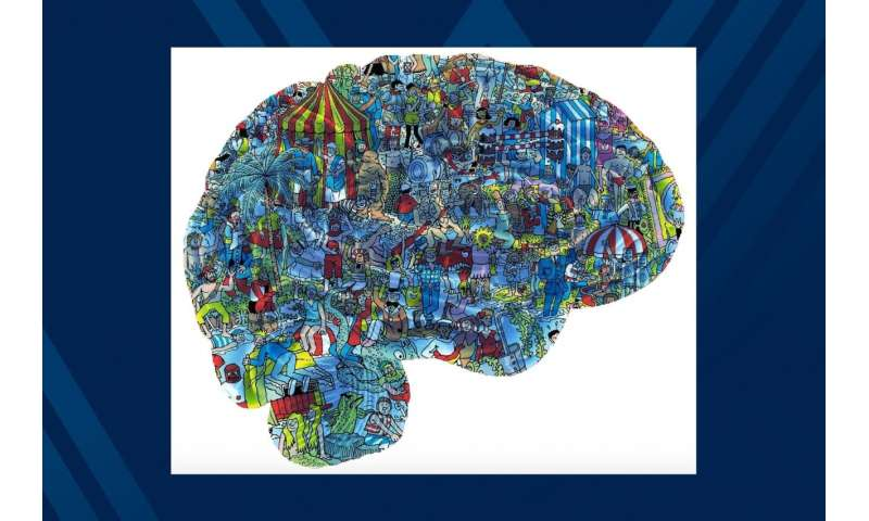 Exploring the brain in a new way: WVU researcher records neurons to understand cognition