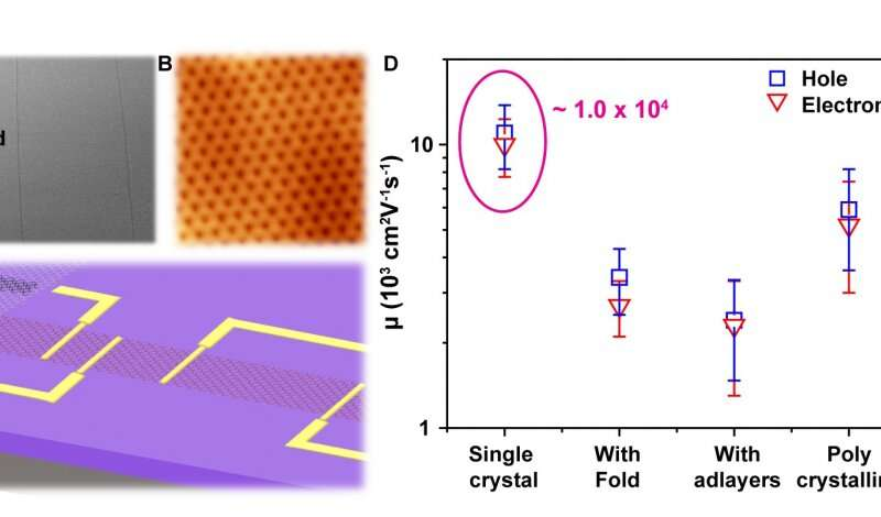 New study reveals graphenes now go monolayer and single crystalline