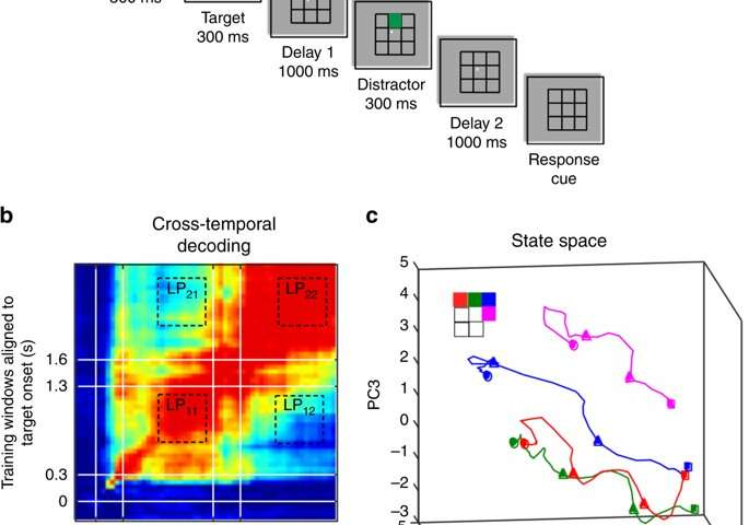 Using machine learning tools to reveal how memories are coded in the brain