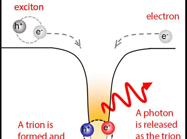 Scientists discover method to create and trap trions at room temperature