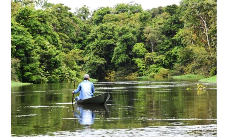 A fisherman on the Jaraua River at the Mamiraua Reserve, in Amazonas state, northern Brazil