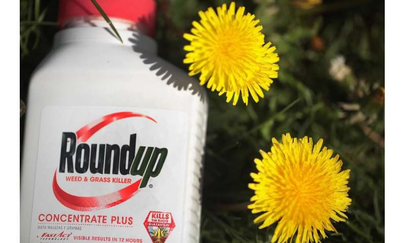 A jury concluded that it was more likely than not that Monsanto weed-killer Roundup caused non-Hodgkin's lymphoma in a Californi