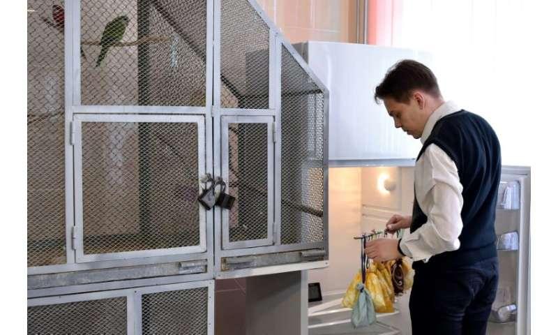 Alexei Shpak, who heads the Minsk bat rescue centre, arranges the bags inside the fridge, which has enough space for 32 bats