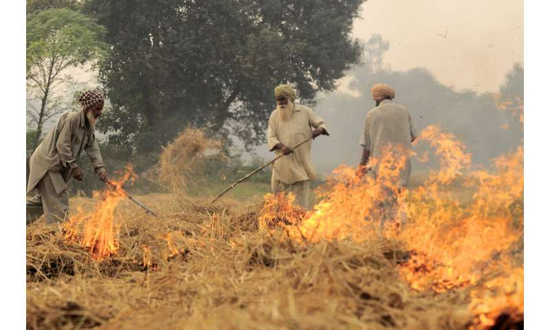 Alternatives to burning can increase Indian farmers' profits and cut pollution
