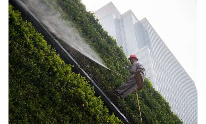 A man waters a vertical garden on a wall of the Shanghai Natural History Museum