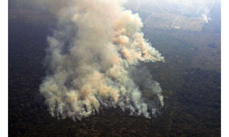 An aerial picture shows smoke from a two kilometre-long stretch of fire billowing from the Amazon rainforest about 65 kilometers