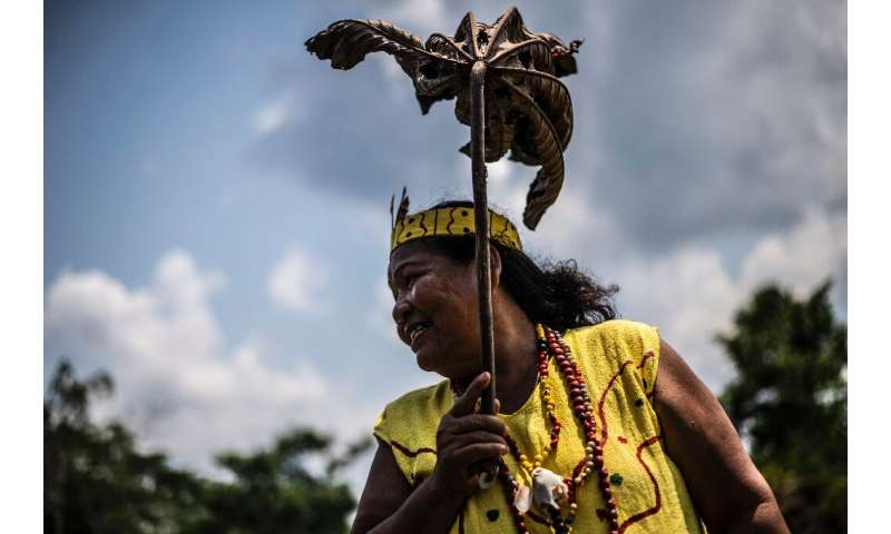 An Arazaire woman protects herself from the sun with a leaf near Puerto Maldonado
