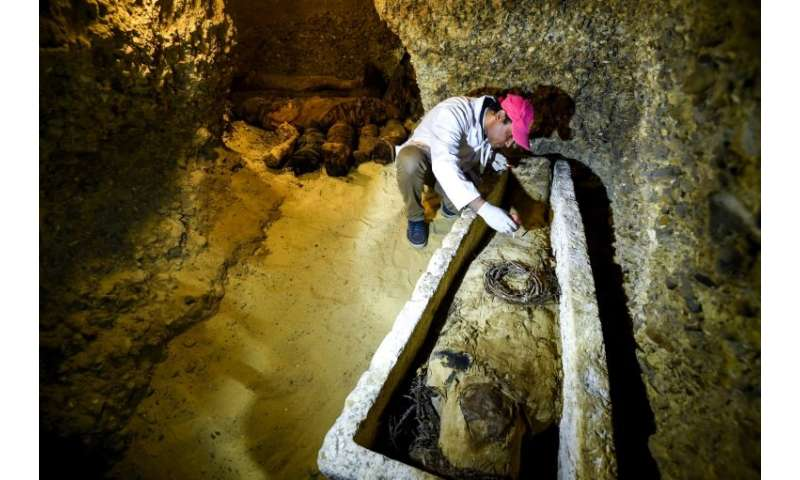 An archaeologist brushes a newly-discovered mummy laid inside a sarcophagus, part of a collection found in burial chambers datin