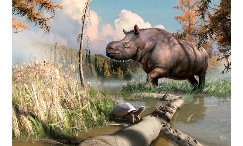 Ancient Rhinoceros roam the Yukon