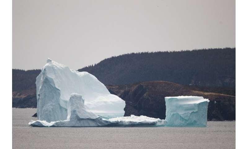 An iceberg floats off Ferryland, Newfoundland in 2017